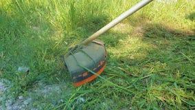 Segadeira de gramado no trabalho Erva daninha do corte do homem usando um equipamento especial O jardineiro sega a grama usando u filme