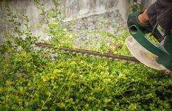 Segadeira elétrica para arbustos ao redor fotografia de stock