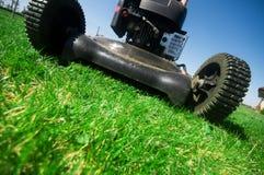 Segando o gramado Imagem de Stock