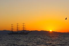 Segel auf dem Sonnenuntergang Lizenzfreies Stockfoto