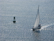 Segelbåt Charleston Harbor South Carolina 2 Arkivbilder