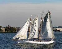 Segelbåt i den övreNew York fjärden, New York, USA royaltyfri foto