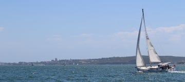 Segelbåt på den Parramatta floden Royaltyfri Fotografi