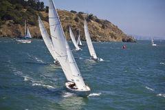 segelbåtar Royaltyfri Fotografi