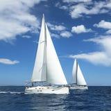 Segelbåtar av regattan Rader av lyxiga yachter på marinaskeppsdockan Royaltyfri Fotografi