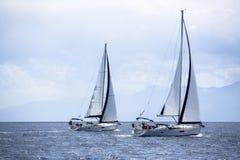 Segelbåtar framme av regattan i morgonmisten Arkivfoto