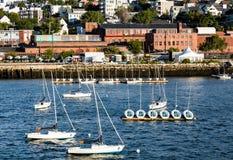 Segelbåtar i hamn med Portland i bakgrund Arkivfoto