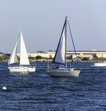 Segelbåtar i San Diego Bay Royaltyfri Bild