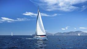 Segelbåtar med vit seglar i havet Arkivbilder