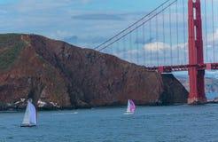 Segelbåtar och Golden Gate Royaltyfri Bild