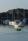 Segelbåtar och små fartyg ankrade med träd i bakgrunden Royaltyfri Foto