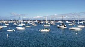 Segelbåtar och yachter i hamn på den soliga Kalifornien dagen stock video