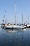 Segelbåtar på marina Royaltyfri Bild