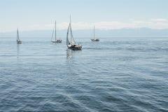 Segelbåtar seglar bort till havet arkivfoton