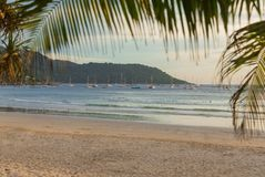 Segelbåtar som vilar efter regatta på den thailändska Kata Beach Phuket ön Arkivfoto