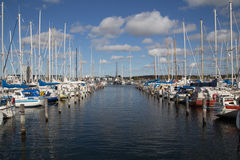 Segelbåthamn Aalborg Arkivbilder