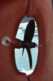 segelbåtskruv Royaltyfri Foto