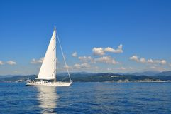 segelbåtwhite Royaltyfri Fotografi