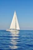 segelbåtwhite Arkivfoto