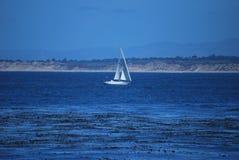 Segelboot in der Monterey-Bucht Lizenzfreies Stockbild