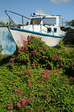 Segelboot im Blumen-Garten Stockfotografie