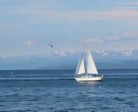 Segelboot im Schacht Lizenzfreie Stockbilder