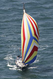 Segelboot mit Spinnaker Stockfoto