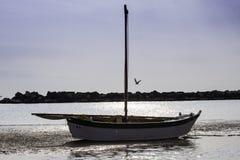 Segelboot in trockenem, Ebbe, adriatisches Italien Lizenzfreie Stockfotografie
