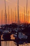 Segelboote Lizenzfreie Stockbilder