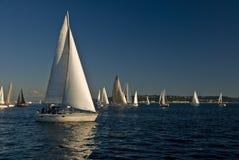 Segelboote auf Puget Sound lizenzfreie stockfotos