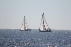 Segelboote, die auf Ozeanrosablasen saling sind Stockfoto