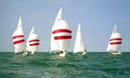 Segelboote, die in Windrichtung mit Spinnakern segeln stockfoto
