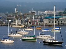 Segelboote in einer Reihe Lizenzfreies Stockfoto