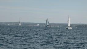 Segelboote nehmen an der Segelnregatta teil stock video