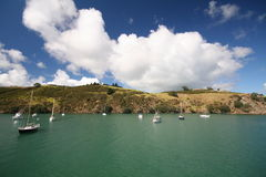 Segelboote in Waiheke Insel Stockfotos