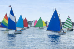 Segelbootparade Stockbild