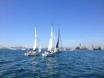 Segelbootrennen von Long Beach Yachtclub Lizenzfreie Stockbilder