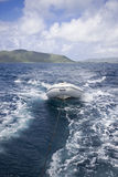 Segelbootschlauchboot Stockbild