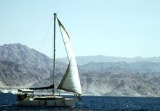 Segelbootsegeln im Roten Meer lizenzfreie stockbilder