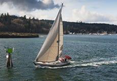 Segelbåt på Puget Sound Royaltyfria Bilder