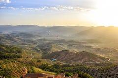 Segelflugzeuge, die über eine Landschaft von Olivenbäumen fliegen Lizenzfreie Stockbilder