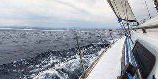 Segeljachtrennen, Regatta segelnd Lizenzfreie Stockfotografie