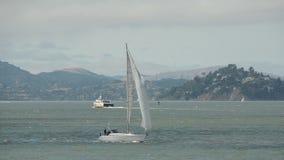 Segeln in San Francisco Stockfoto