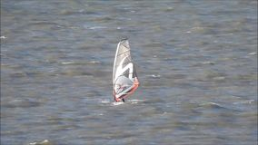 Segeln Windsurferwindsurfen stock video footage