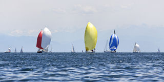 Segelnboote stockbilder