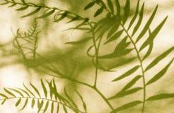 Segeltuchblatt-Musterhintergrund Stockbilder