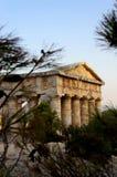 Segesta希腊寺庙在西西里岛 图库摄影