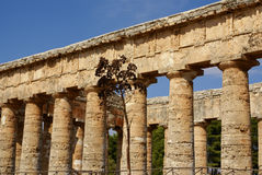Segesta archaeological site of ancient greece drills Sicily Ital Royalty Free Stock Photo