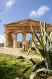 Segesta archaeological site of ancient greece drills Sicily Ital Stock Images