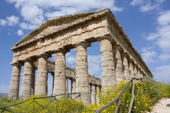 Segesta - Doric temple. The beautiful ancient temple of Segesta Royalty Free Stock Images